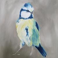 "'Small But Fierce' Blue Tit study Oil on canvas panel 10 x 12"""