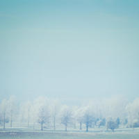 Winter - 5 x 5 inch photographic print in a 7 x 7 inch mount
