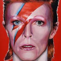 Ziggy Stardust, Oil painting on box canvas, 76cm x 54cm, original. Price £550