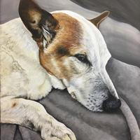 Elvis - Portrait of a much loved Jack Russell, acrylic on canvas.