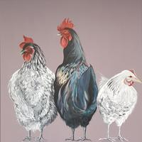 Chooks original painting 70x70cm