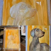 Undertaking a pet portrait by building layers of water colour.
