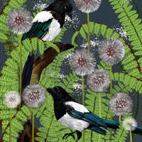 Magpies, Fern and clockweed