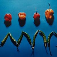 Photograph : Peppers and Chillies