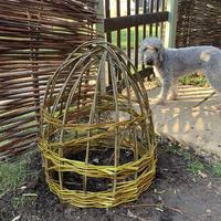 Peony cage ( dog not included!)