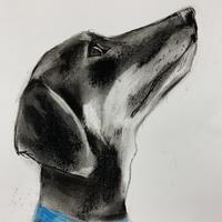 Horace the Hotdog - Charcoal and pastel on paper
