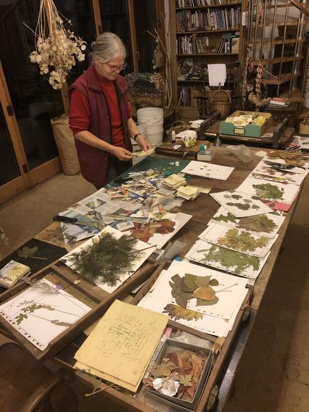 Making collage cards with pressed botanicals