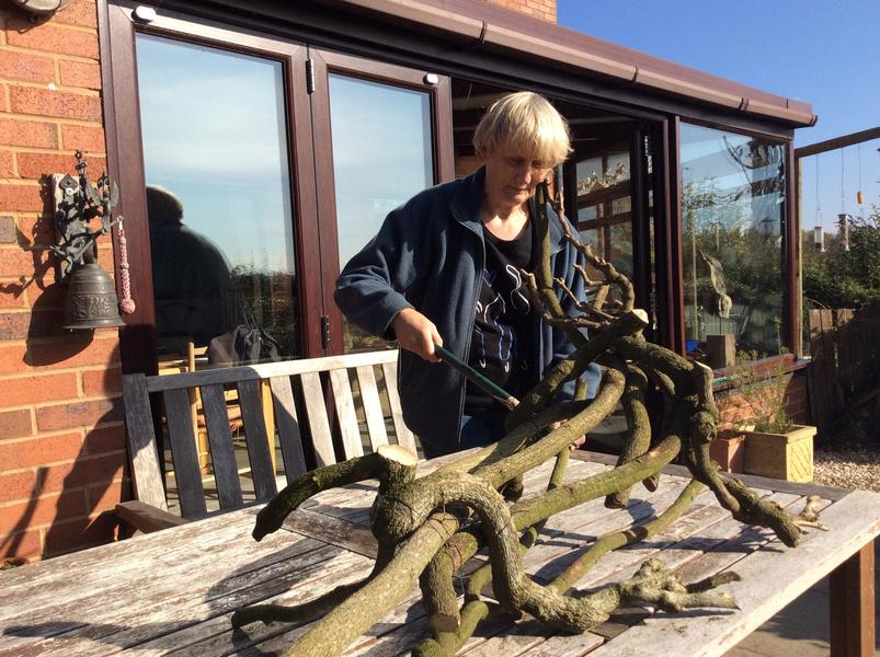 Julia at work on Croc - wisteria wood and wire