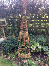 Plant wigwams and supports